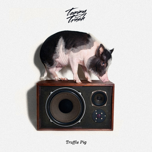 Tommy Trash - Truffle Pig (Original Mix)