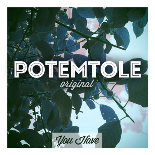 PotemTole - You Have (Original Mix)