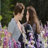 Twilight last scene: loved you for a thousand years