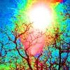Lupe Fiasco & Gramatik - Eternal Daydream