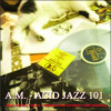A.M. - ACID JAZZ 101  (Rare Acid Jazz Classics Compilation from Avé Mario's vynil collection) 160