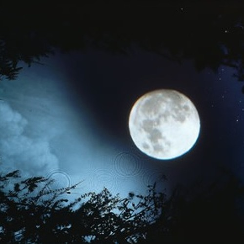 Nocturne 1 d- minor - Full moon