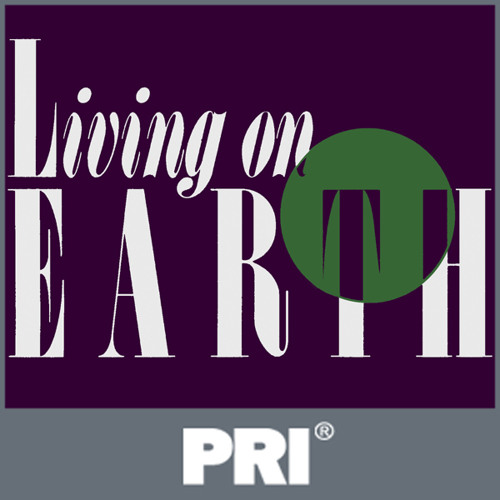 Living on Earth: November 30, 2012