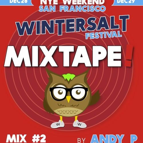 WINTERSALT MixTape #2 :: Andy P