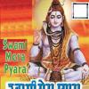 Swami Ji Ke Dar Pe Chlyein - Vikki Singh