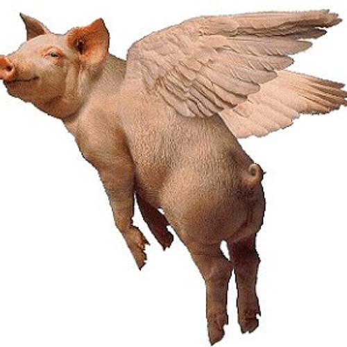 Pig Icarus