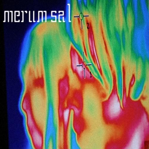 Merum sal_2