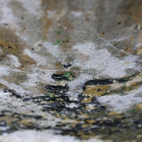 Swamps Up Nostrils - Undistrual