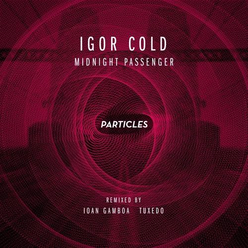 Igor Cold - Midnight passenger - Ioan Gamboa Remix