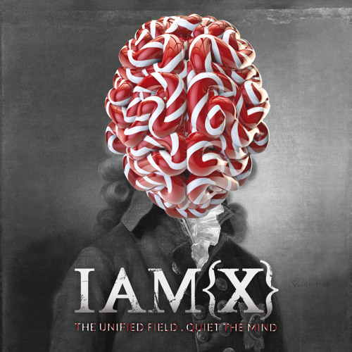 IAMX - The Unified Field (Faux Tales Remix)