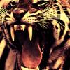 EYE OF THE TIGER (80s Metal Version)