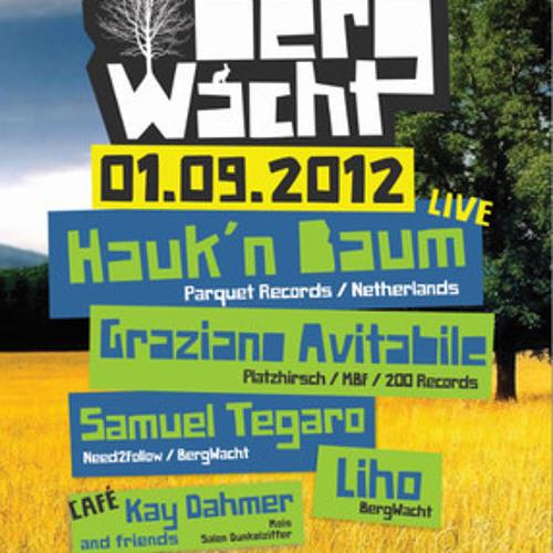 Hauk 'n Baum Live @ BergWacht Artheater Cologne 01.09.2012