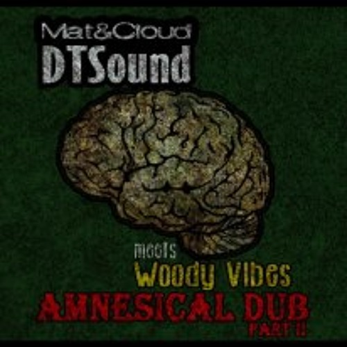 MatDTSound & Cloud meets Woody Vibes - Amnesical Dub - Part II