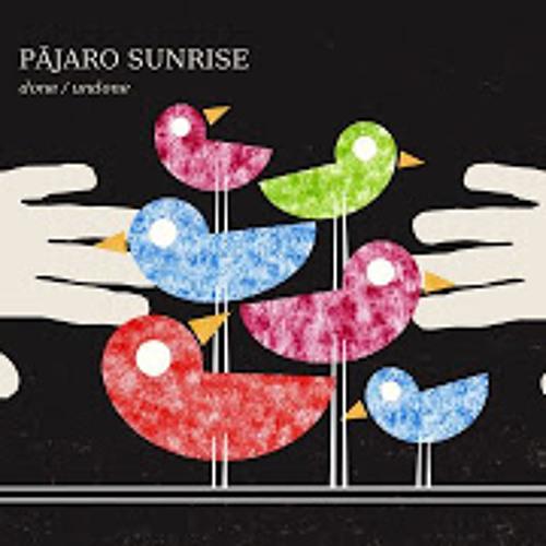 Perfect - Pájaro Sunrise