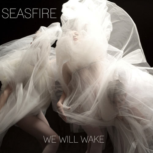 Seasfire - We Will Wake (Machines Don't Care Remix)