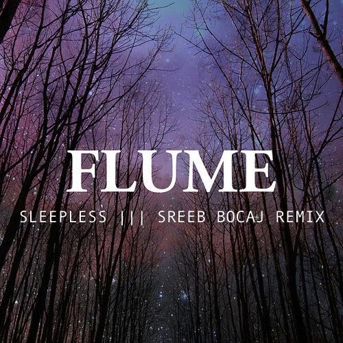 Flume- Sleepless ft. Jezzabell Doran (Sreeb Bocaj Remix)
