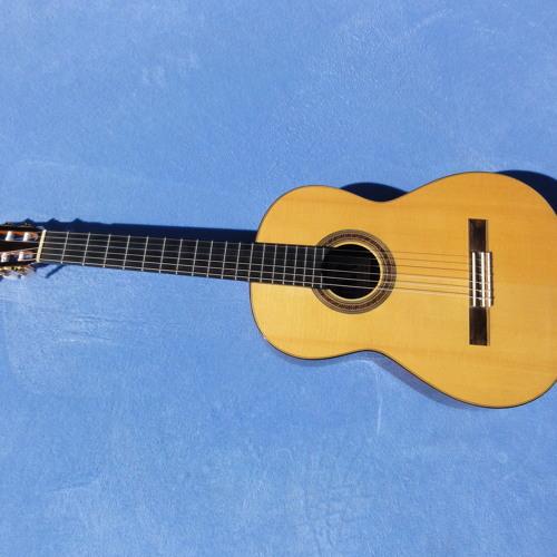 Montalvo Hauser Master Guitar