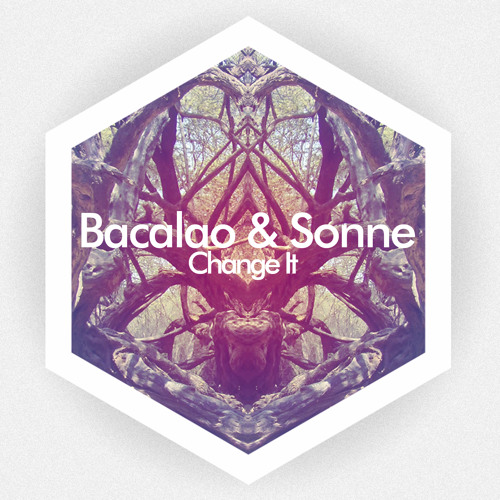 Bacalao & Sonne - Change It (Snippet)