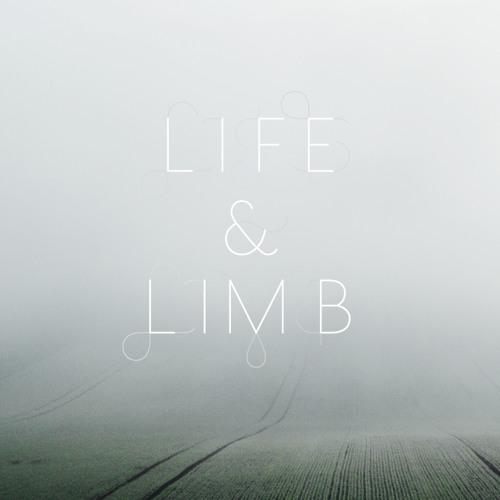 Life & Limb -Cage Seeks Bird (Toy boy remix)
