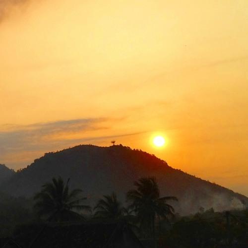 *Morning SUN*Original*