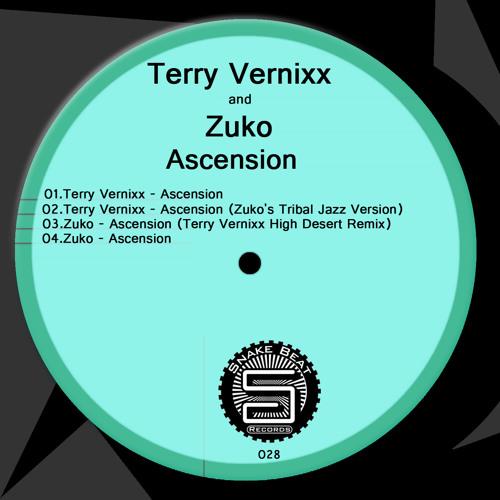Terry - Vernixx  Ascension (Original Mix)