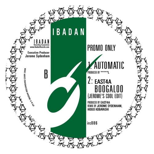 Automatic (excerpt) IBADAN records 2008