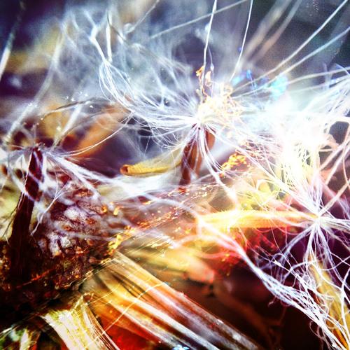 Celestial Transmissions (Interlude I)