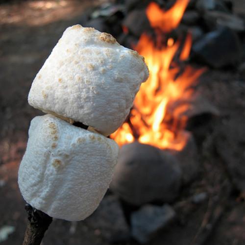 Marshmallows Vs Buzz On ( Humberto Baddini Mashup) FREE DOWNLOAD
