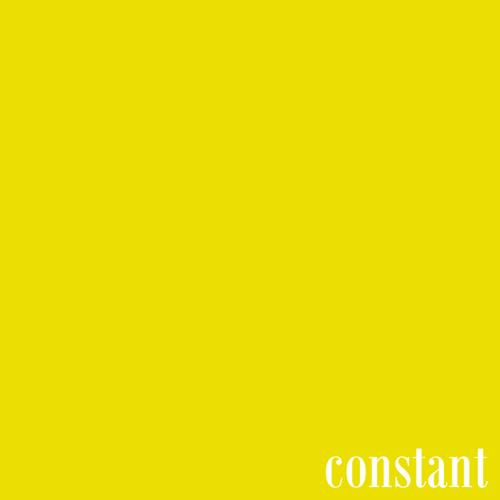 Constant (2011)