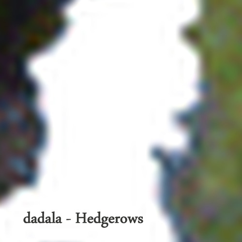 Hedgerow 85