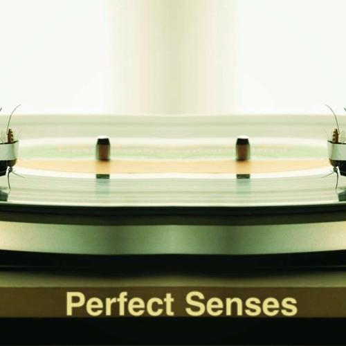 Perfect Senses - Jazzile (original mix)reimeimusic