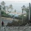 Stranded Horse -  Transmission (Joy Division cover)