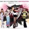 2NE1 - UGLY (GLOBAL TOUR LIVE NEW EVOLUTION) [Audio]