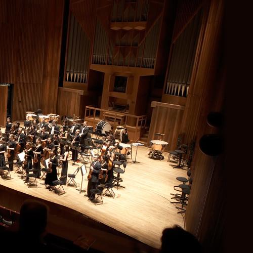 Brahms - Symphony No. 4 in E minor, op. 98 - Allegro non troppo