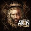 Awder Ft. Akon ( I Try So Hard ) KurdishRap *Remix*