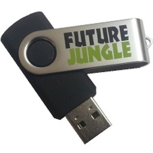 Simon Harris - Control The Fear - Future Jungle USB Keyring