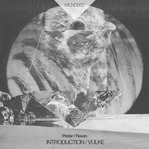 MLND007 Peder / Raven - Introduction / Vulke EP preview