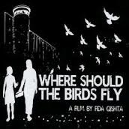 Flashpoints Daily Newsmag 12-05-12. Where Should The Birds Fly