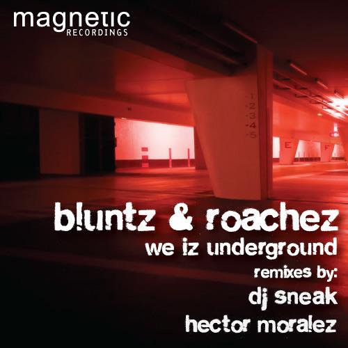 BLUNTZ & ROACHEZ | THIS IZ UNDERGROUND | SNEAK BIG MAN MIX | MAGNETIC RECORDINGS | MAGD040