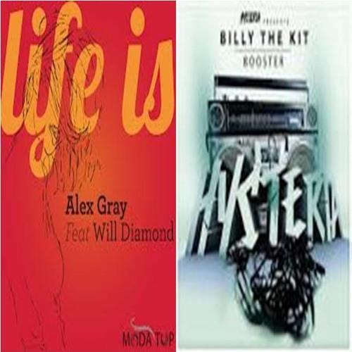 Alex Gray Feat.Will Diamond vs.Billy The Kit - Life Is Booster (Jefferson Gazzineu MashUp)