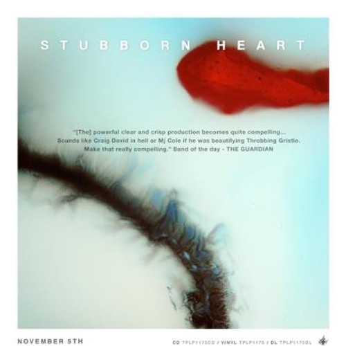 Stubborn Heart - Remixes