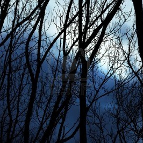Nocturne 3 - Winter twilight