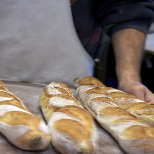 Interview with Mark's Bread