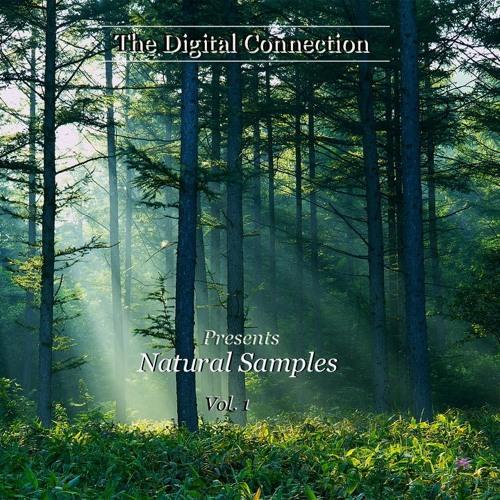 Natural Samples Vol. 1 - Demo Track [FREE PRODUCER SAMPLE PACK DOWNLOAD IN DESCRIPTION]