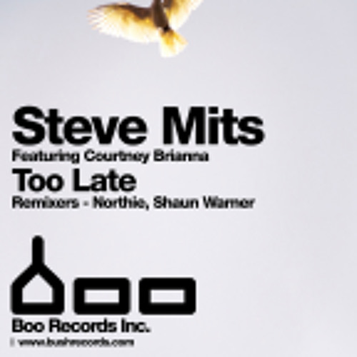MITS ft Courtney Brianna- Too Late (Shaun Warner remix) BOO Records