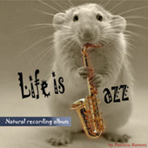 What a difference a day made  dall'album  Life is Jazz!