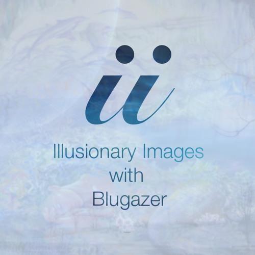 Illusionary Images 013 [Dec 06 2012]