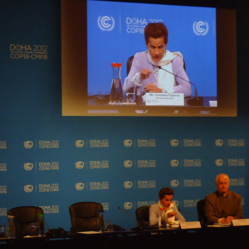 NIGERIAN MINISTER OF THE ENVIRONMENT ADDRESS AT THE COP 18