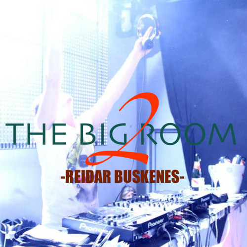 Reidar Buskenes - The Big Room 2