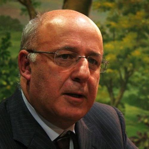 Fernando Seara explica processo de intimação contra a Assembleia da República
